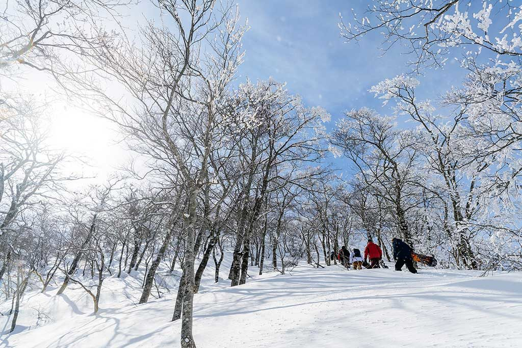 MINOWA POWDER HUNT